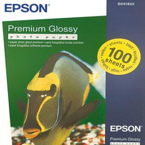 Epson C13S041822